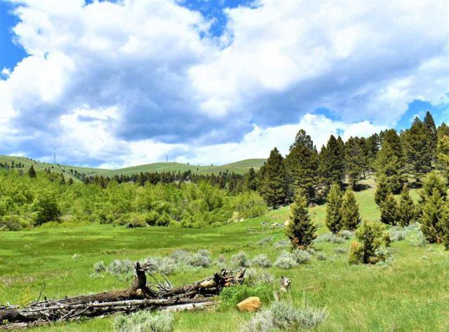Tbd Blue Mountain View Ranch, Boulder, MT 59632 (MLS #21901158) :: Keith Fank Team