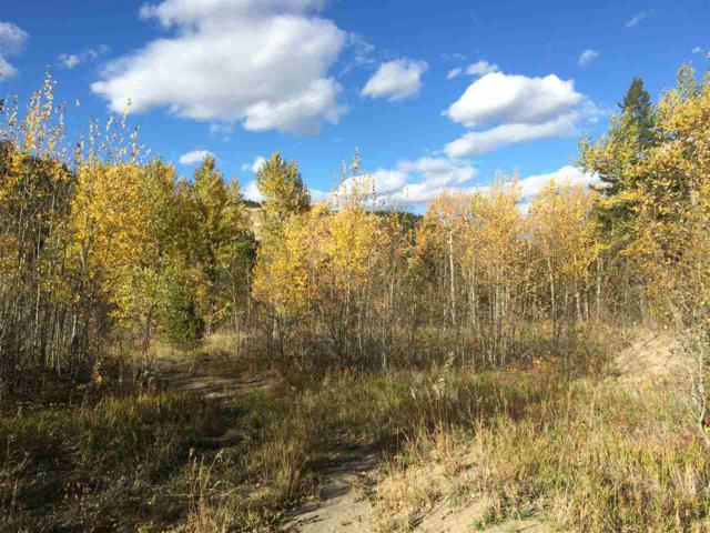 Tbd Holmes Gulch Road, Montana City, MT 59634 (MLS #21901550) :: Andy O Realty Group