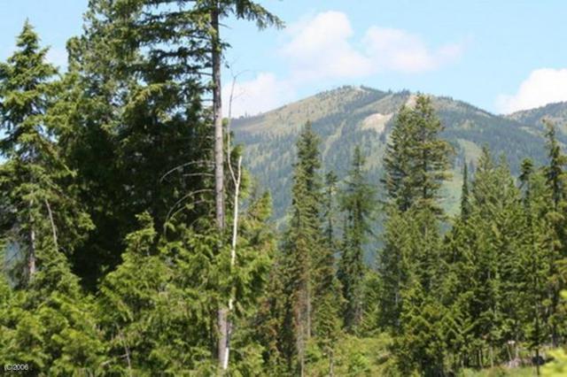 191 Woodlandstar Circle, Whitefish, MT 59937 (MLS #21902776) :: Brett Kelly Group, Performance Real Estate