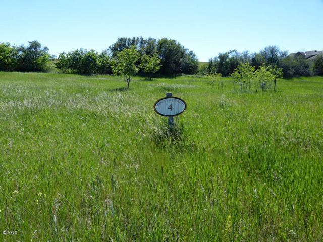 193 Pheasant Ridge, Polson, MT 59860 (MLS #21902891) :: Performance Real Estate