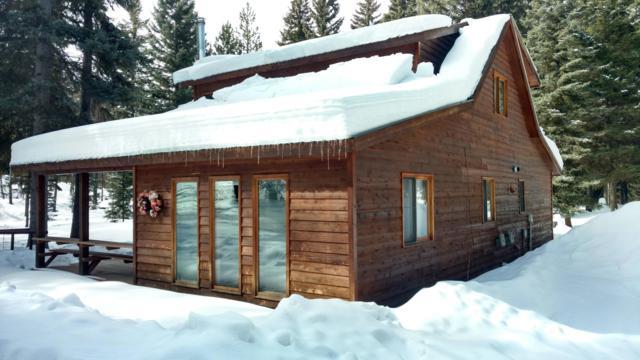 180 Buckskin Drive, Seeley Lake, MT 59868 (MLS #21903050) :: Brett Kelly Group, Performance Real Estate