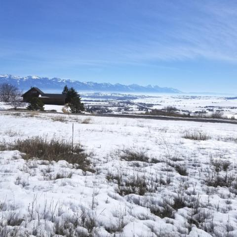 Nhn Meadow Rd, Polson, MT 59860 (MLS #21903204) :: Andy O Realty Group