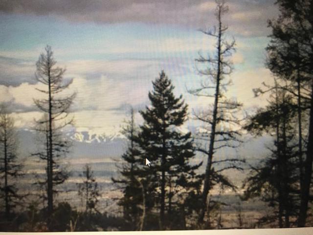 Nhh Patrick Creek Road, Kalispell, MT 59901 (MLS #21903207) :: Andy O Realty Group