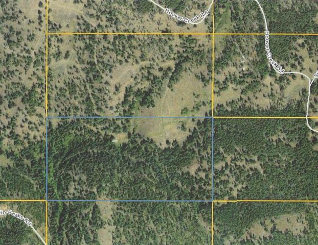 541 Defendor Lane, Gold Creek, MT 59733 (MLS #21903228) :: Brett Kelly Group, Performance Real Estate