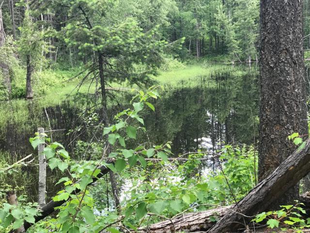 181 Gun Powder Lane, Columbia Falls, MT 59912 (MLS #21903294) :: Andy O Realty Group