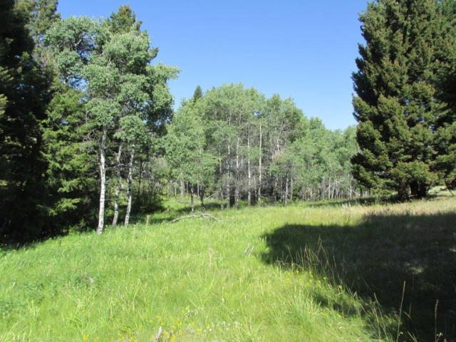 Address Not Published, Anaconda, MT 59711 (MLS #21903302) :: Andy O Realty Group