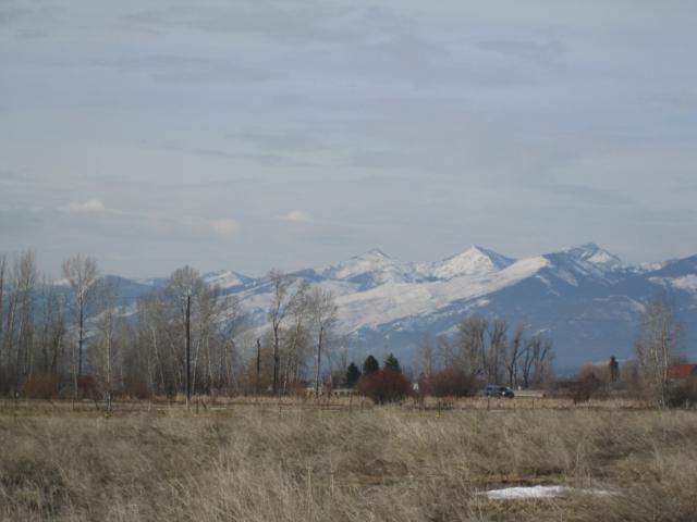 4354 Eastside Hwy, Stevensville, MT 59870 (MLS #21903712) :: Montana Life Real Estate