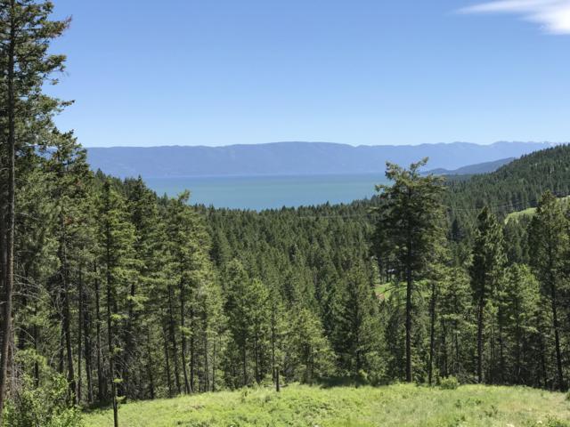 248 Coyote Ridge, Somers, MT 59932 (MLS #21904175) :: Loft Real Estate Team