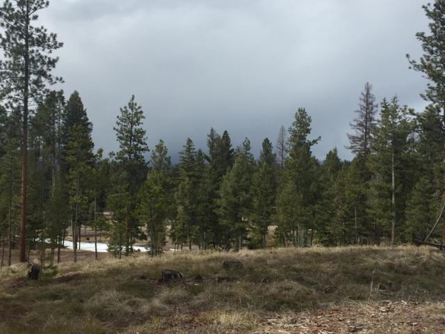 336 Drew Creek Loop, Seeley Lake, MT 59868 (MLS #21904359) :: Performance Real Estate