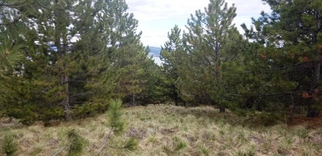 Lot Claffey Drive, Polson, MT 59860 (MLS #21904903) :: Loft Real Estate Team