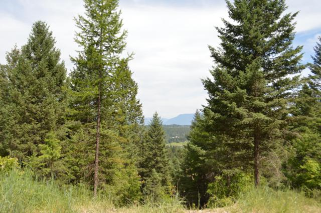 270 Antler Ridge Road, Whitefish, MT 59937 (MLS #21905558) :: Performance Real Estate