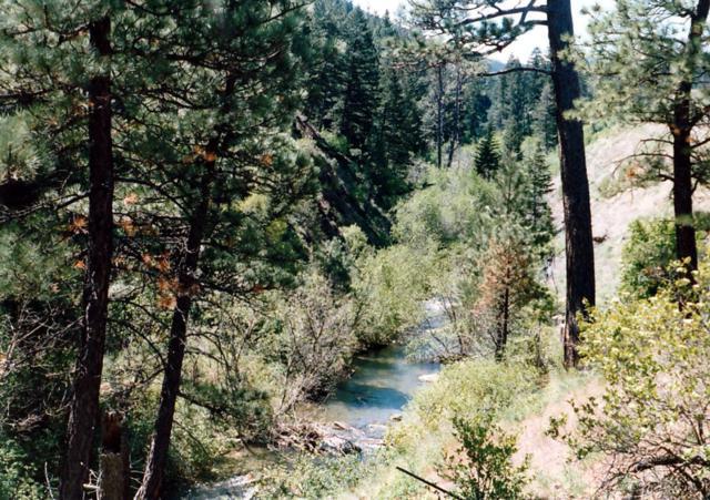 Nhn Hwy 200, Wolf Creek, MT 59648 (MLS #21905949) :: Keith Fank Team