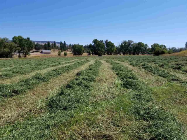 2800 Spokane Creek Road, East Helena, MT 59635 (MLS #21906243) :: Andy O Realty Group