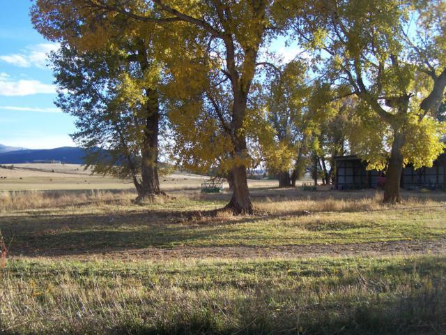 2800 Spokane Creek Road, East Helena, MT 59635 (MLS #21906248) :: Andy O Realty Group