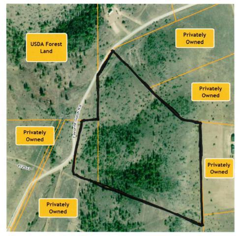Tbd Favorite Gulch Rd., Helena, MT 59602 (MLS #21906677) :: Brett Kelly Group, Performance Real Estate