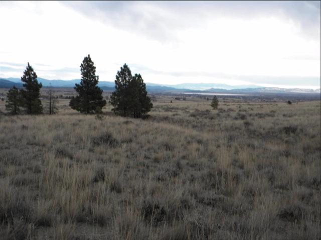Tbd Buffalo Horn, Helena, MT 59602 (MLS #21907364) :: Andy O Realty Group