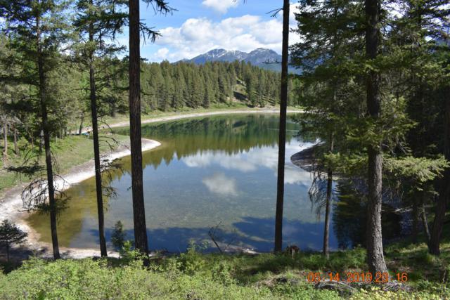 218 Many Lakes Drive, Kalispell, MT 59901 (MLS #21907550) :: Brett Kelly Group, Performance Real Estate