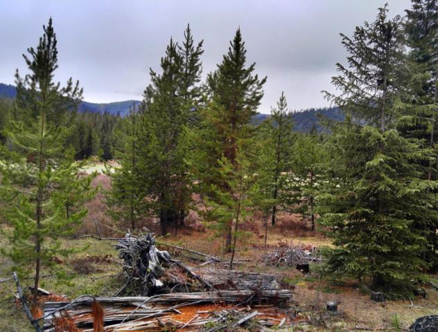 Nhn No Name, Libby, MT 59923 (MLS #21907643) :: Keith Fank Team