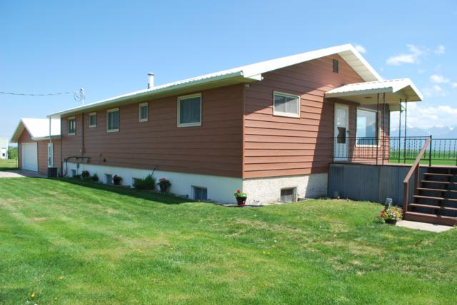 41456 Dellwo Road, Charlo, MT 59824 (MLS #21907853) :: Brett Kelly Group, Performance Real Estate