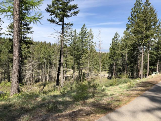 178 Buckaroo Trail, Bigfork, MT 59911 (MLS #21908131) :: Andy O Realty Group