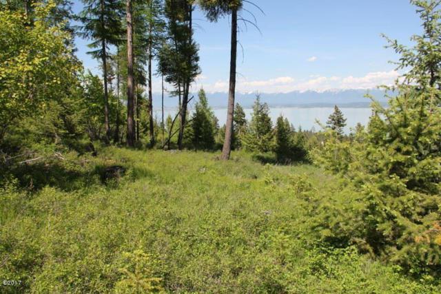 263 Ridge Line Drive, Lakeside, MT 59922 (MLS #21908635) :: Andy O Realty Group