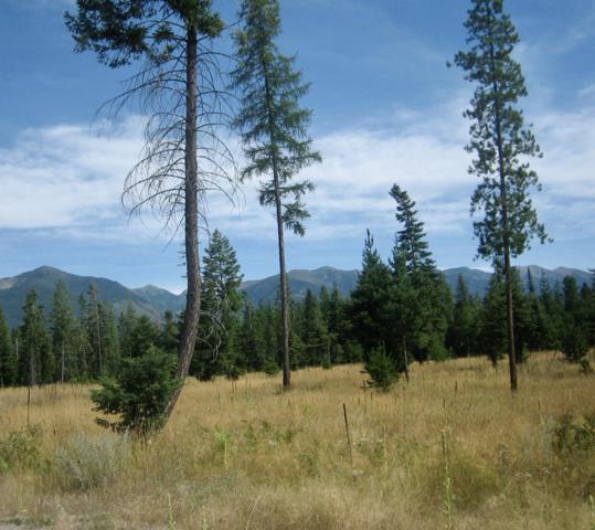 Nhn Treefarm Trail, Bigfork, MT 59911 (MLS #21909379) :: Andy O Realty Group