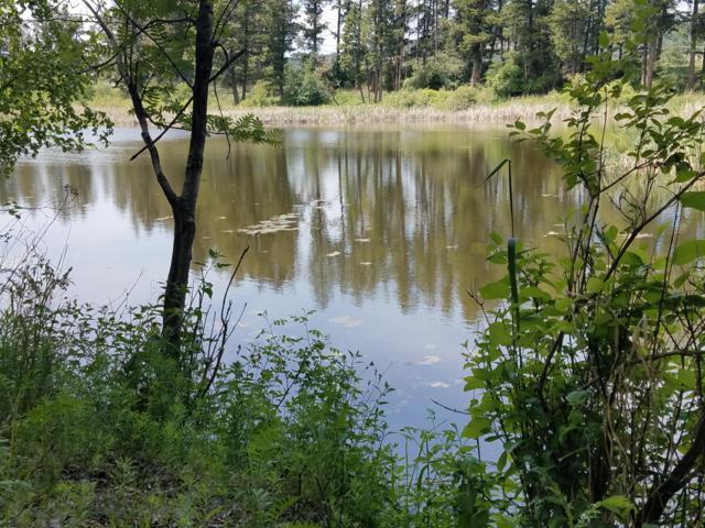 124 Hidden Waters Lane, Kalispell, MT 59901 (MLS #21909403) :: Andy O Realty Group