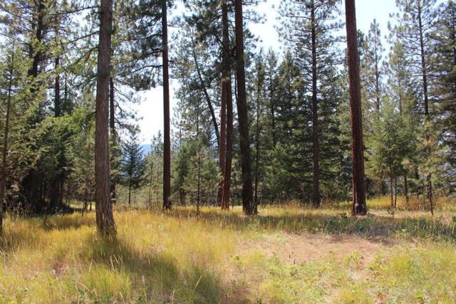 Unk Cramer Creek, Clinton, MT 59825 (MLS #21909426) :: Andy O Realty Group