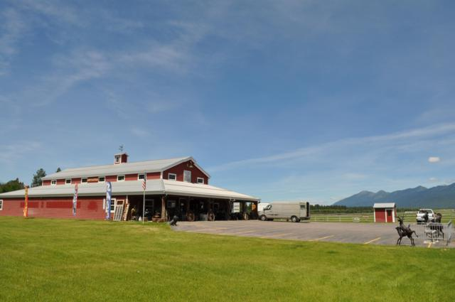 100 Hill Road, Bigfork, MT 59911 (MLS #21909503) :: Andy O Realty Group