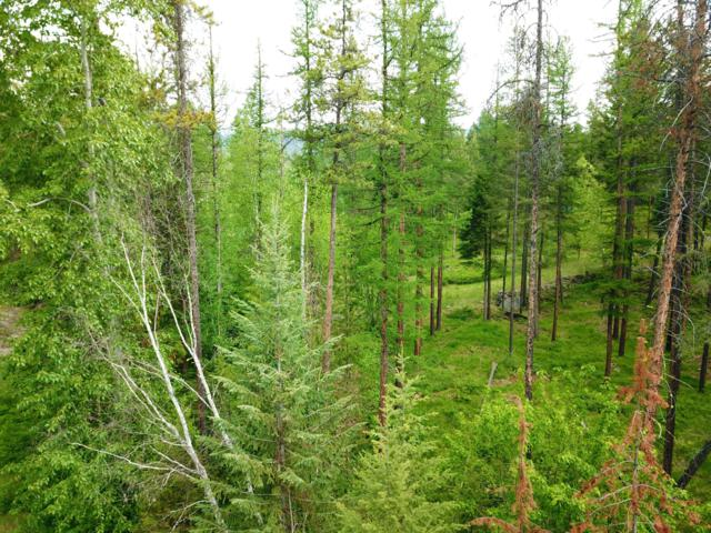 1980 Ridge Crest Drive, Whitefish, MT 59937 (MLS #21909510) :: Andy O Realty Group