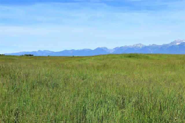 Nhn Biggerstaff Lane, Charlo, MT 59824 (MLS #21909573) :: Andy O Realty Group