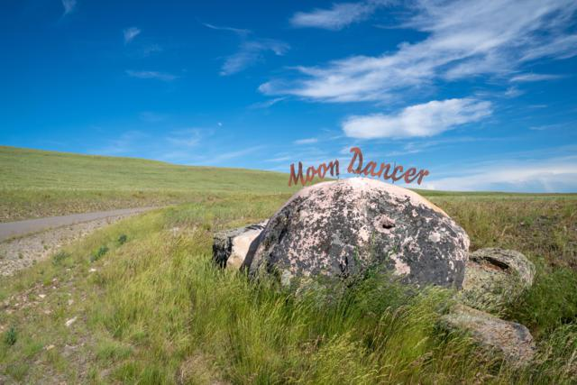 6346 Moon Dancer Cluster, Missoula, MT 59802 (MLS #21909600) :: Andy O Realty Group