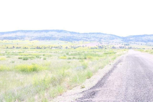5856 Matt Staff Road, East Helena, MT 59635 (MLS #21910389) :: Andy O Realty Group