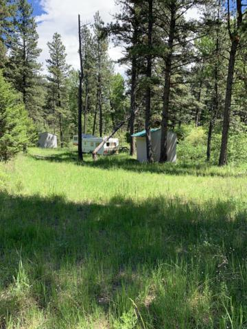 Nhn Address Not Published, Wolf Creek, MT 59648 (MLS #21910662) :: Andy O Realty Group