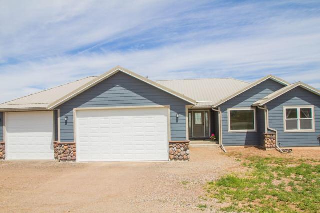 41 Butch Cassidy Loop, Great Falls, MT 59405 (MLS #21910692) :: Performance Real Estate