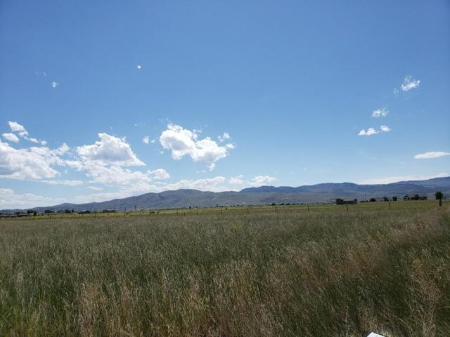 Tbd Baldyview Lane, Townsend, MT 59644 (MLS #21910865) :: Andy O Realty Group