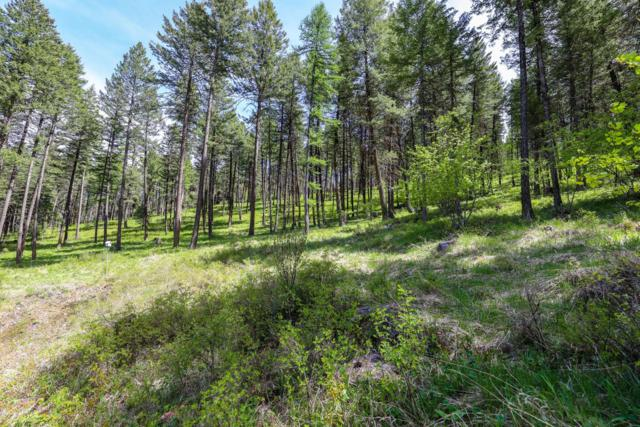 Nhn Jette Lake Trail, Polson, MT 59860 (MLS #21910968) :: Andy O Realty Group
