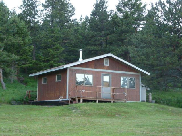 3685 French Creek Road, Wolf Creek, MT 59648 (MLS #21911157) :: Andy O Realty Group
