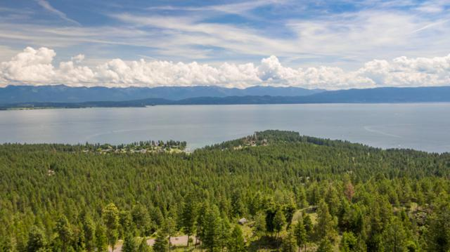 710 Bear Mountain Road, Lakeside, MT 59922 (MLS #21911272) :: Brett Kelly Group, Performance Real Estate