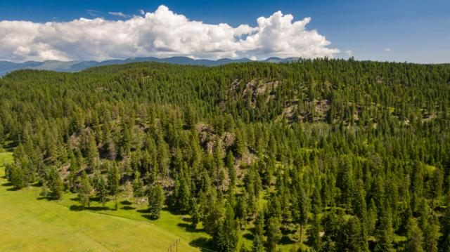 Aspen Bluff, Whitefish, MT 59937 (MLS #21911438) :: Brett Kelly Group, Performance Real Estate
