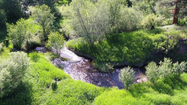 Warm Springs Creek Road, Clancy, MT 59634 (MLS #21911595) :: Andy O Realty Group