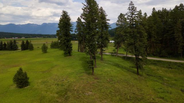 37 Red Tail Ridge, Bigfork, MT 59911 (MLS #21911601) :: Brett Kelly Group, Performance Real Estate