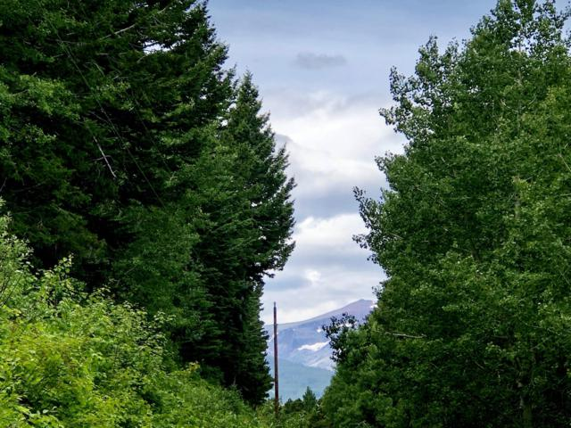 0 Big Springs Trail, East Glacier Park, MT 59434 (MLS #21911768) :: Whitefish Escapes Realty