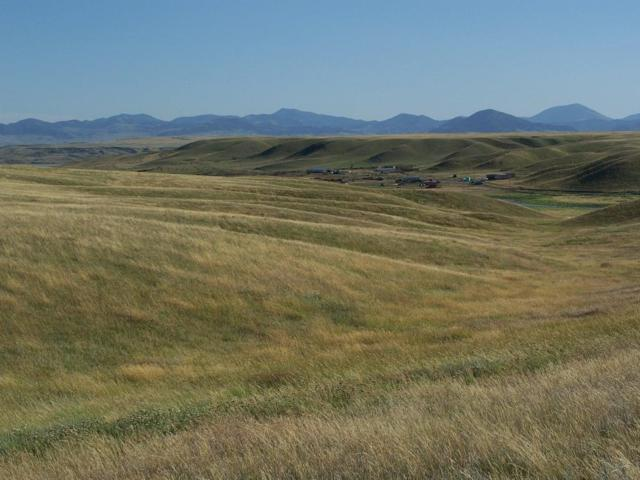 2172 Montague Road, Fort Benton, MT 59442 (MLS #21912729) :: Dahlquist Realtors