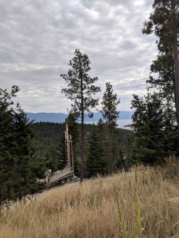 Nkn Wild Horse Ranch Road, Rollins, MT 59931 (MLS #21915522) :: Performance Real Estate