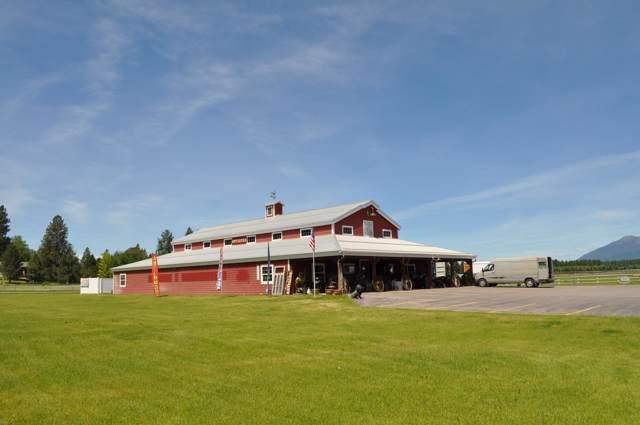 100 Hill Road, Bigfork, MT 59911 (MLS #21915530) :: Performance Real Estate