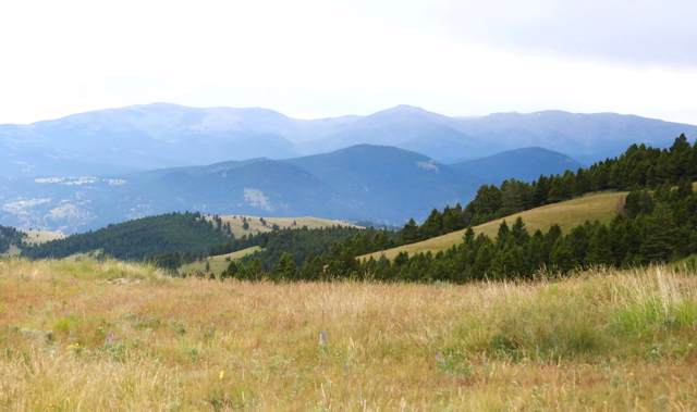 Tbd Holmes Gulch Road, Helena, MT 59601 (MLS #21915929) :: Andy O Realty Group