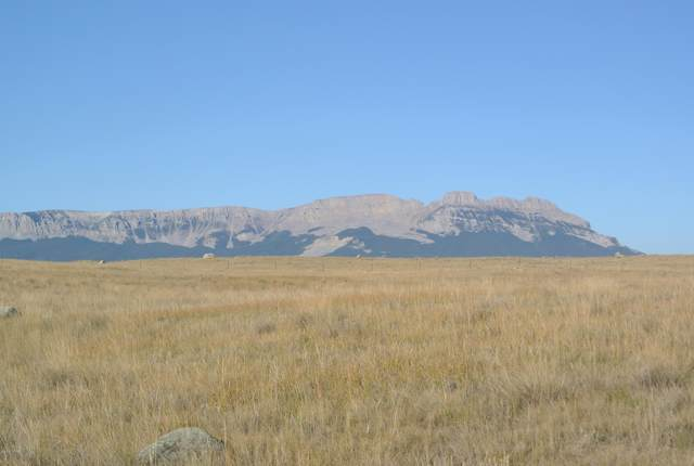 Lot 238 Willow Creek, Augusta, MT 59410 (MLS #21916215) :: Performance Real Estate