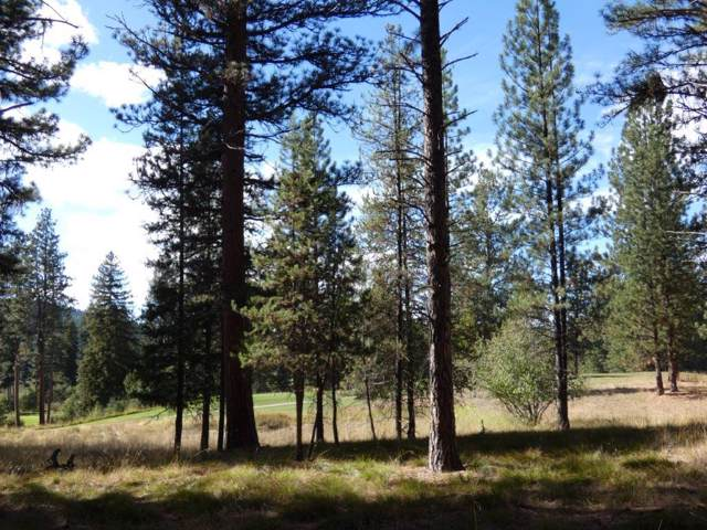 Nhn Golf View Drive, Seeley Lake, MT 59868 (MLS #21916499) :: Performance Real Estate