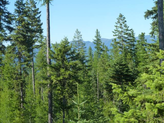 Parcel B Hill Meadows Road, Whitefish, MT 59937 (MLS #21916879) :: Performance Real Estate
